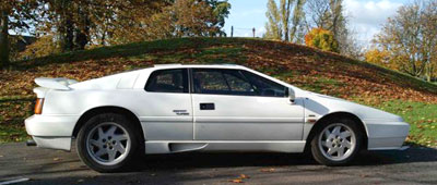 White Lotus Esprit